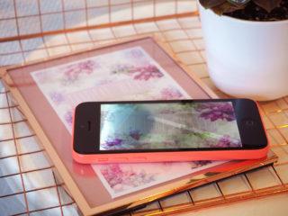 fond écran iphone 5c cadre maison du monde plantes grasse cactus bureau office