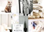 un moodboard aux allures d'hiver blanc à l'honneur couverture lifestyle cocooning décor mode fashion pull laine