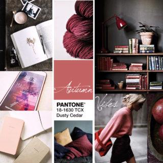 moodboard inspiration automne automnale pantone 18-1630 TCX marsala dusty cedar bordeaux book livre fond ecran pull jupe cuir simili cuir